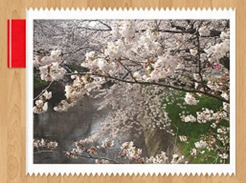 2014-04-01-06-54-11_deco.jpg